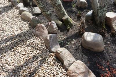 mulching-your-yard